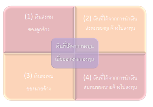 PVF_1
